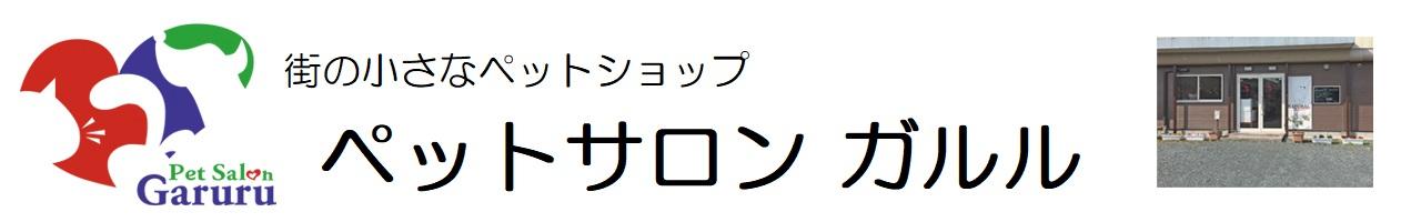 トイプードルのブリーダー、子犬販売。福岡県福岡市西区、糸島市のペットショップ「ペットサロンガルル」